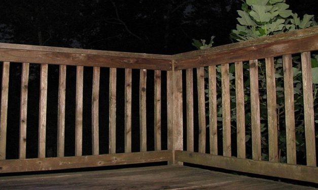 How to Tell If Wood is Pressure Treated